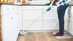 Essential Oil doTERRA DIY Cleaning Recipes with FREE Printable Cleaning Sheet